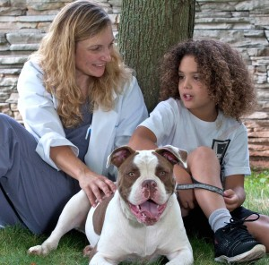 Dr. Lisa Schenkel leads our canine physical therapy