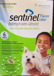 Sentinel is available at Animal Medical of New City, New City veterinarian