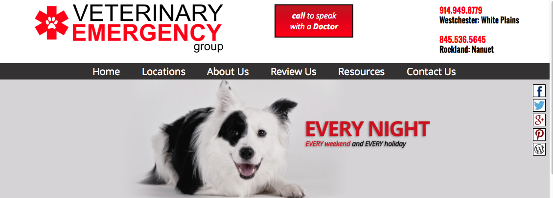Veterinary Emergency Group New To the New City Area