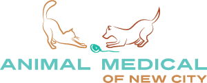 Animal Medical New City