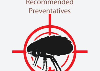 Recommend Flea, Tick and Heartworm Preventatives